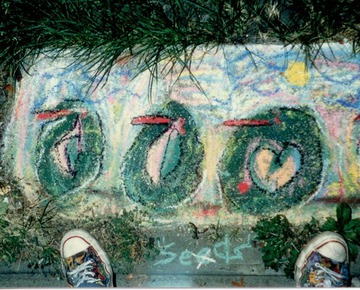 Maurice Greenia, Jr. Collections: At the Heidelberg Project, Seeds
